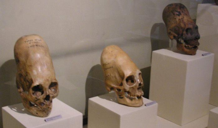 Пришельцы майя