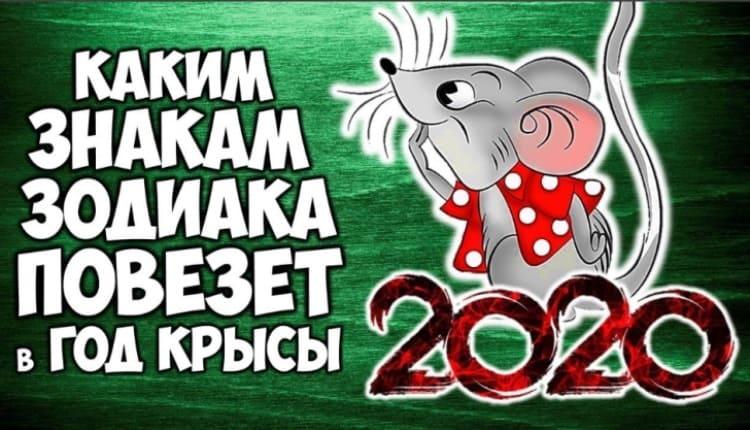 Год Крысы 2020. Что ждет каждого знака зодиака. Гороскоп по восточному календарю