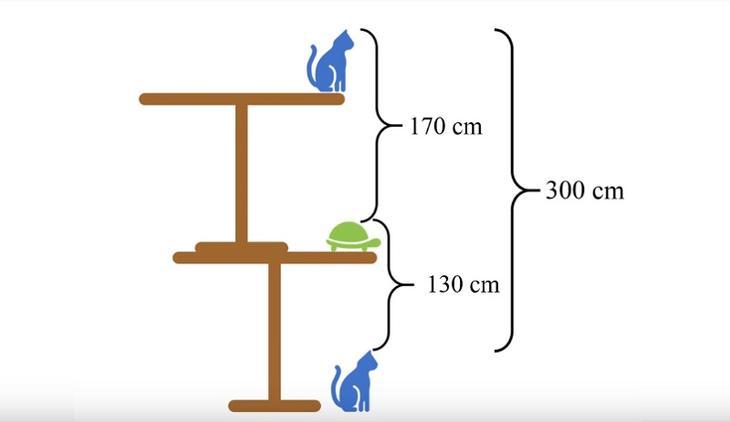 Какая высота стола - решение