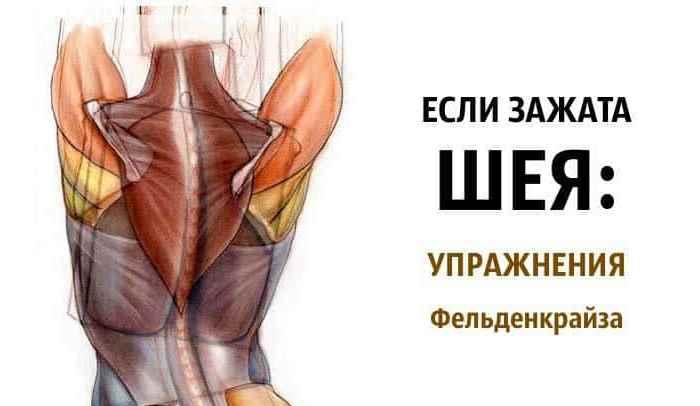 Если зажата шея упражнения Фельденкрайза