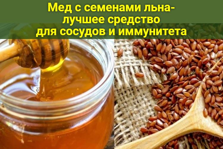 Мед с семенами льна- лучшее средство для сосудов и иммунитета