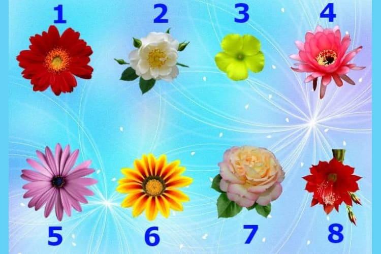 Тест-Гадание: Выберите цветок и узнаете, что говорит Вам Вселенная