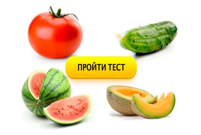 Дыня или арбуз? Самый простой в мире тест
