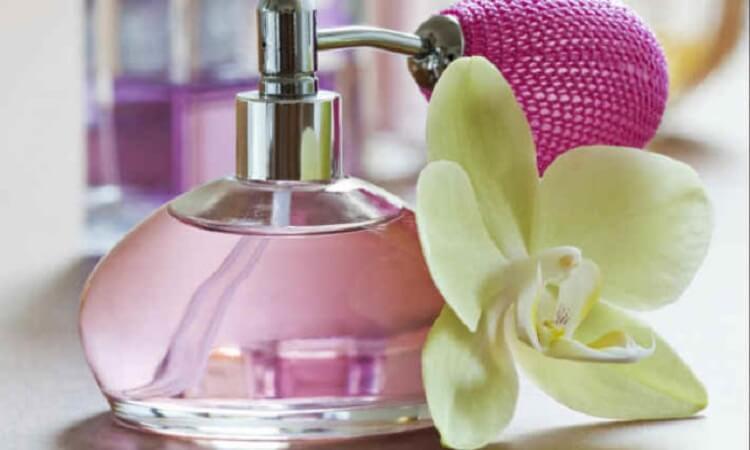 Лучшие женские духи всех времен – 10 неповторимых ароматов!