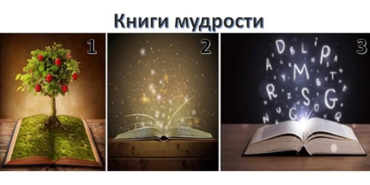 Выберите Книгу Мудрости. Она покажет вам путь к реализации целей