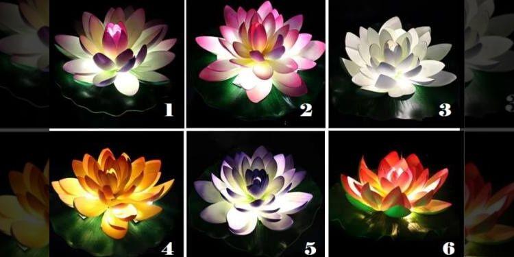 Выберите цветок лотоса и получите ценный совет, для вашей текущей ситуации в жизни