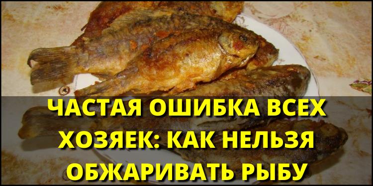 Частая ошибка всех хозяек: как нельзя обжаривать рыбу