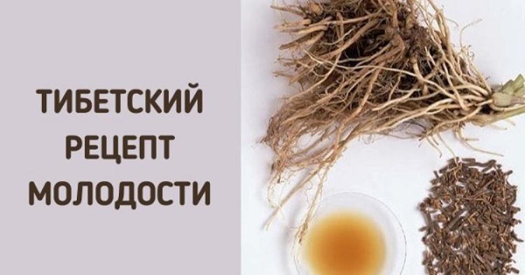 Укроп, мёд, валериана — и сосуды без изъяна!