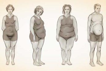 Какой у Вас гормональный сбой: определяем по типу фигуры