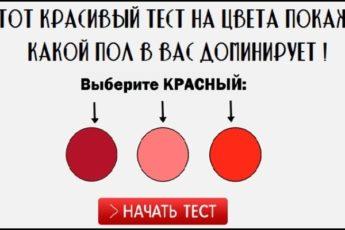 Этот красивый тест на цвета покажет, какой пол в вас доминирует!