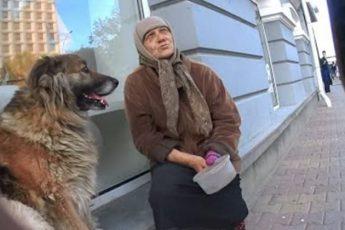 Молодой парень попросил денег у нищей старушки. Её ответ перевернул мой мир!